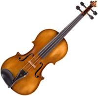 VIOLIN NEW (MONTH-TO-MONTH) (Copy) (VLNEW)